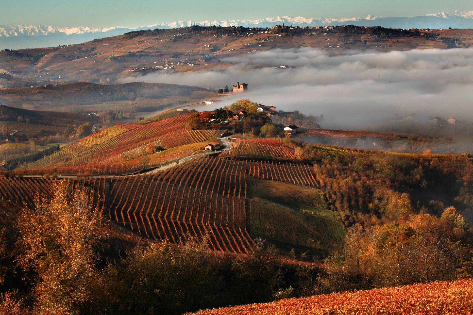 barolo italian wine land