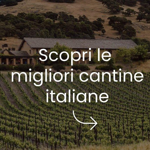 aziende vinicole divinea