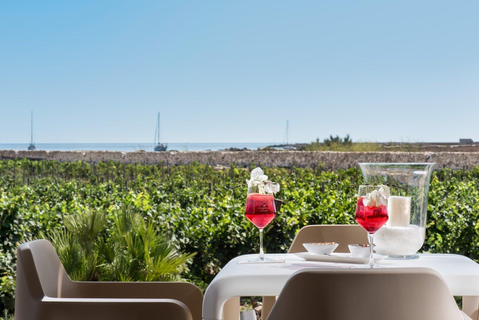 degustazione vista mare a favignana, cantine vicine ai luoghi di vacanza in sicilia