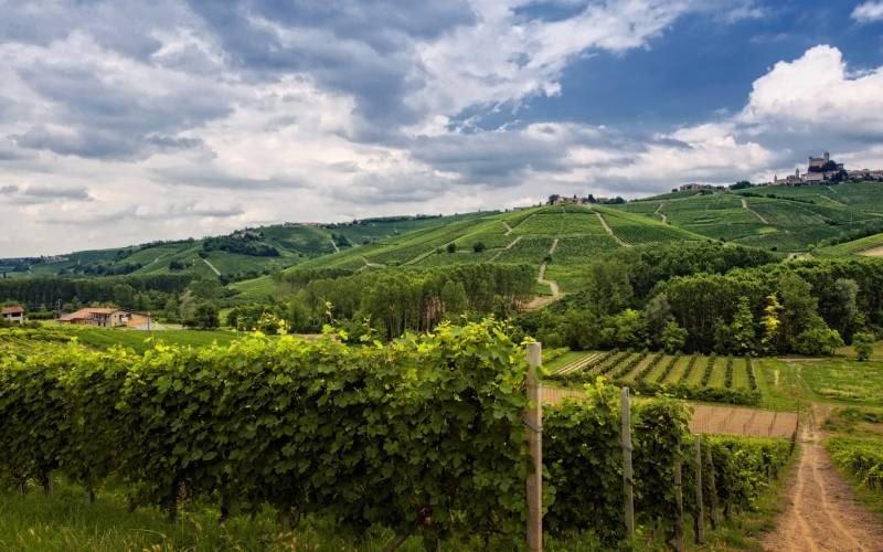 regalare delle esperienze di degustazione vino