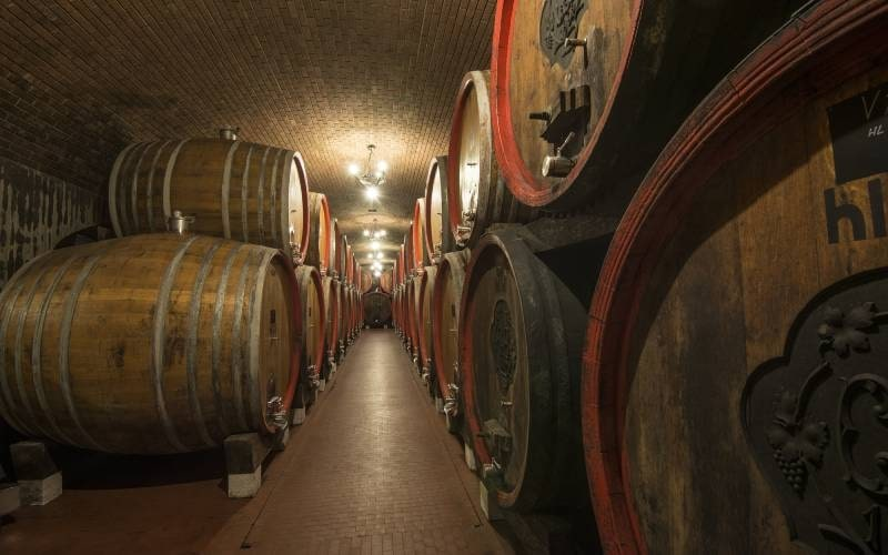 una degustazione con antichi vinai